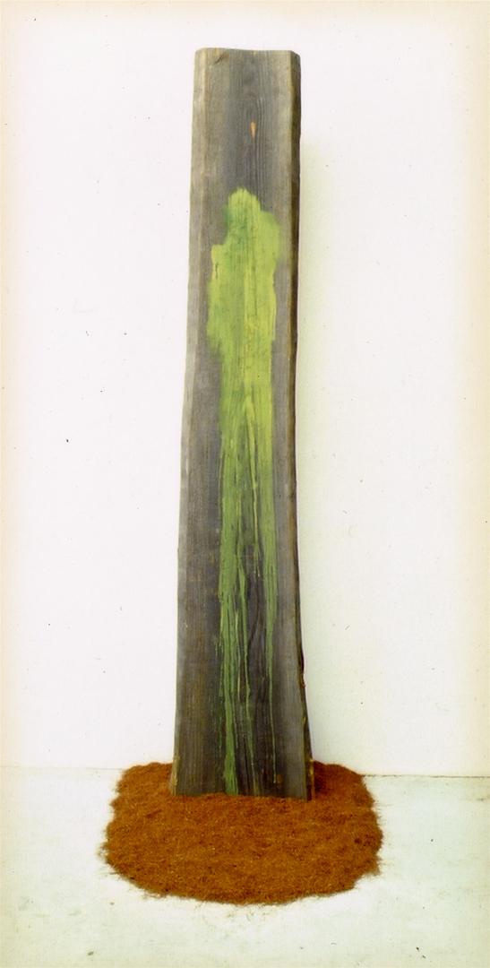 O-137 >l'albero della merisana<